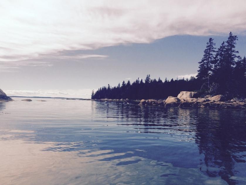 shore bliss